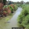 Israel recuperará el Jordán con agua del mar de Galilea